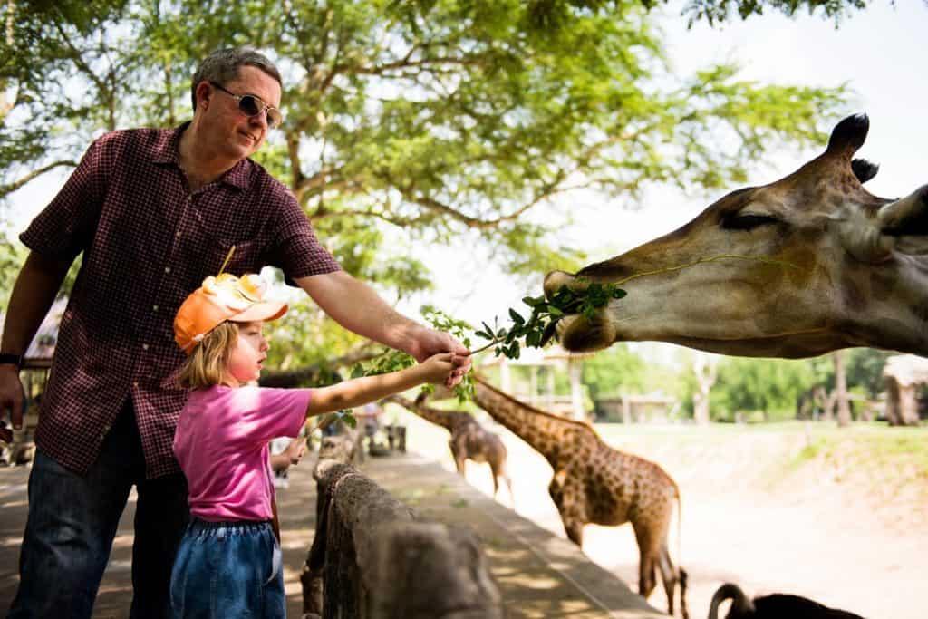 حديقة حيوان لندن وجهات سياحية عائلية